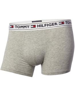 Tommy Bodywear White Logo Waistband Trunks